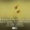 Hâris El-Muhasibî'nin Fehmü'l Kur'ân Eserinde Anlamak ve Hürmet Arasındaki İlişkiye Dair Bir Değerlendirme