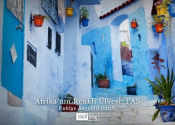 Afrika'nın Renkli Ülkesi: FAS